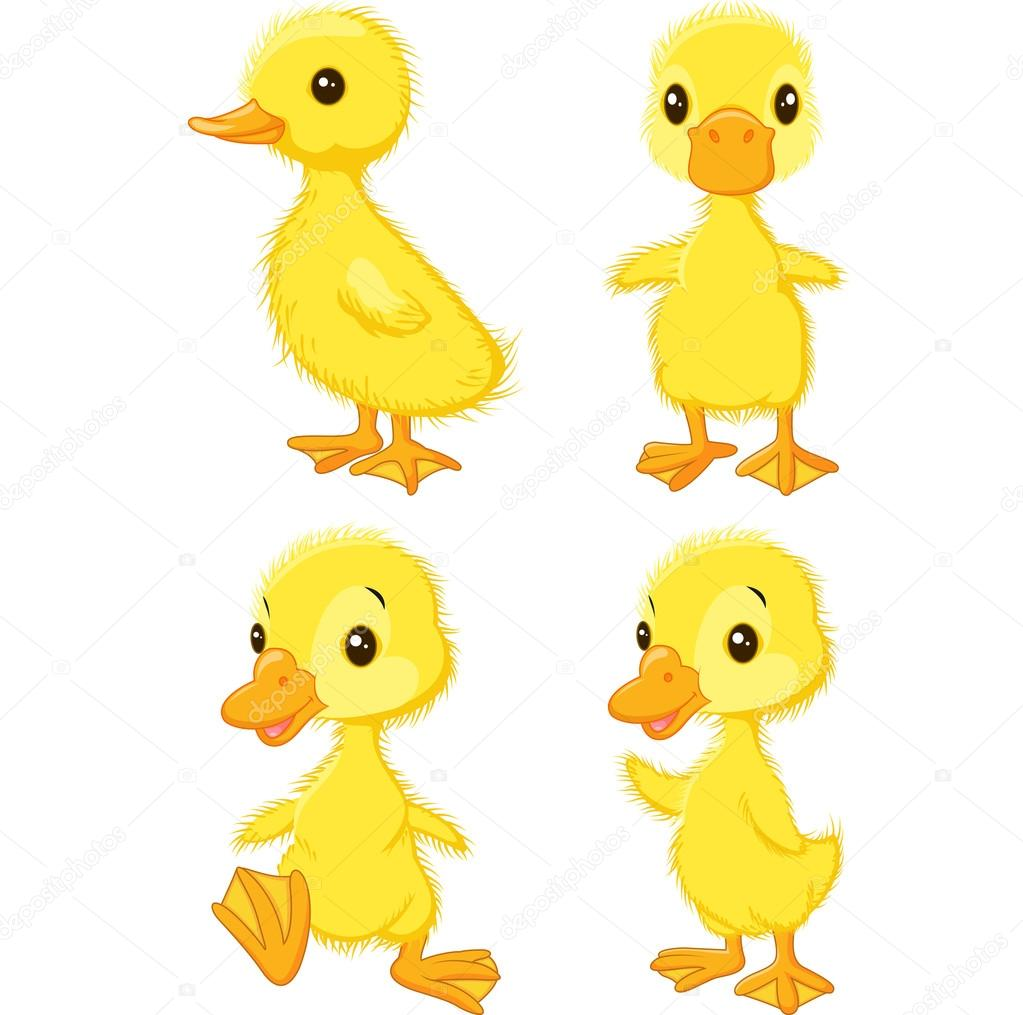 Pictures Cartoon Baby Duck Cartoon Baby Duck Stock Vector