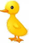Süße Ente Cartoon