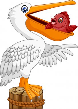 Cartoon funny Pelican in the bay with fish in mouth