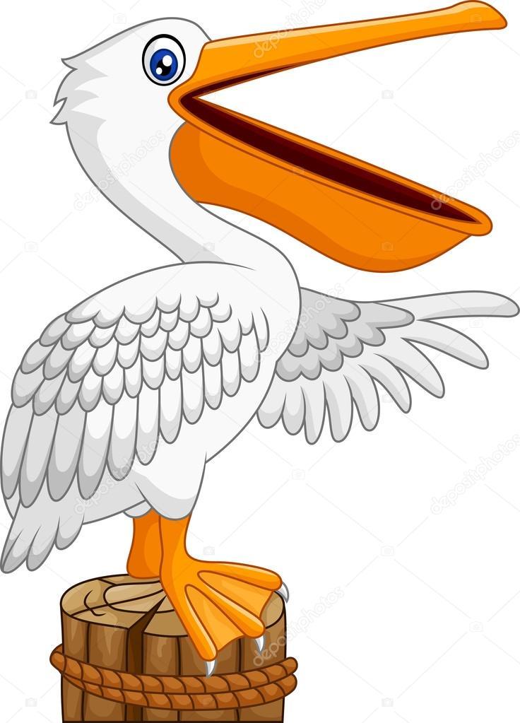 Dibujos animados pel cano en la bah a archivo im genes - Fotos de pelicanos ...