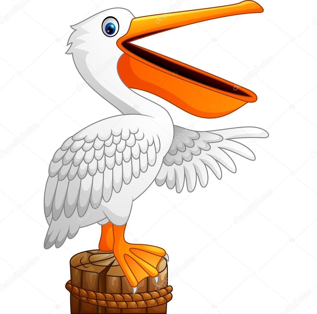 Dibujos pelicanos dibujos animados pel cano en la bah a - Fotos de pelicanos ...