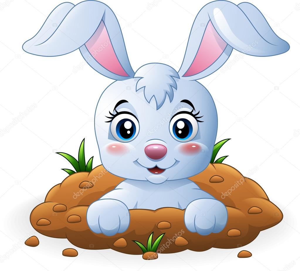 Fotos de conejos animados 2