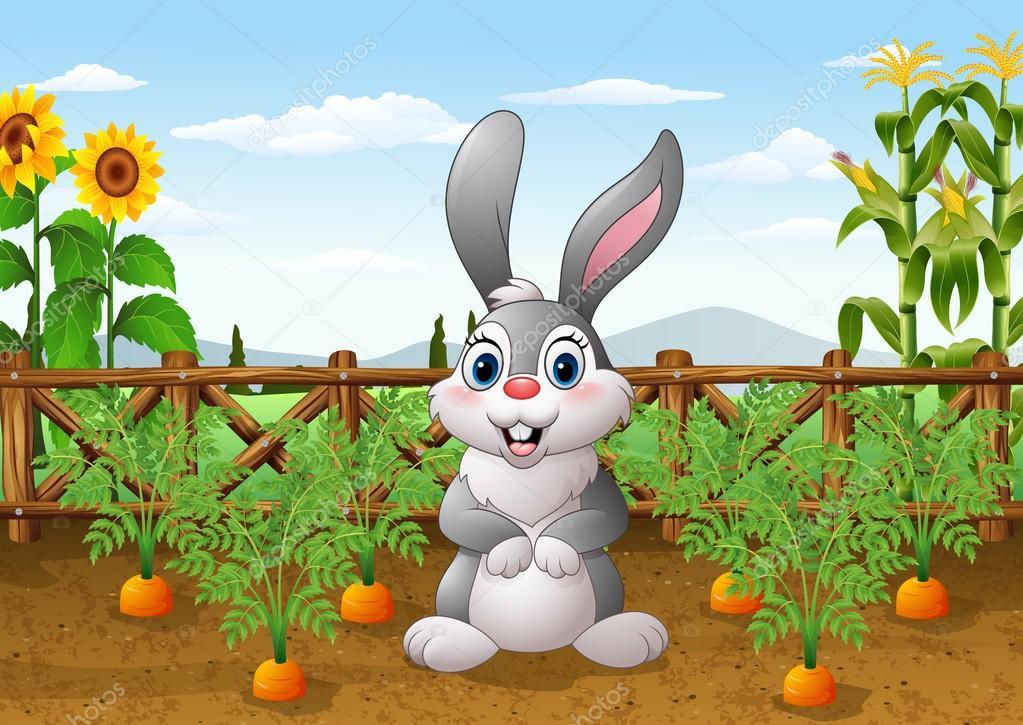 Conejo De Dibujos Animados Con La Planta De Zanahoria En