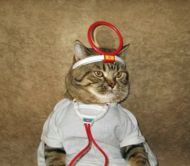 A cat is a doctor.