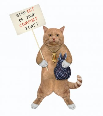 A reddish cat holds a poster that says step out of your comfort zone. White background. Isolated.