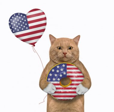A reddish cat patriot holds a balloon and eats a donut painted like the USA flag. White background. Isolated.