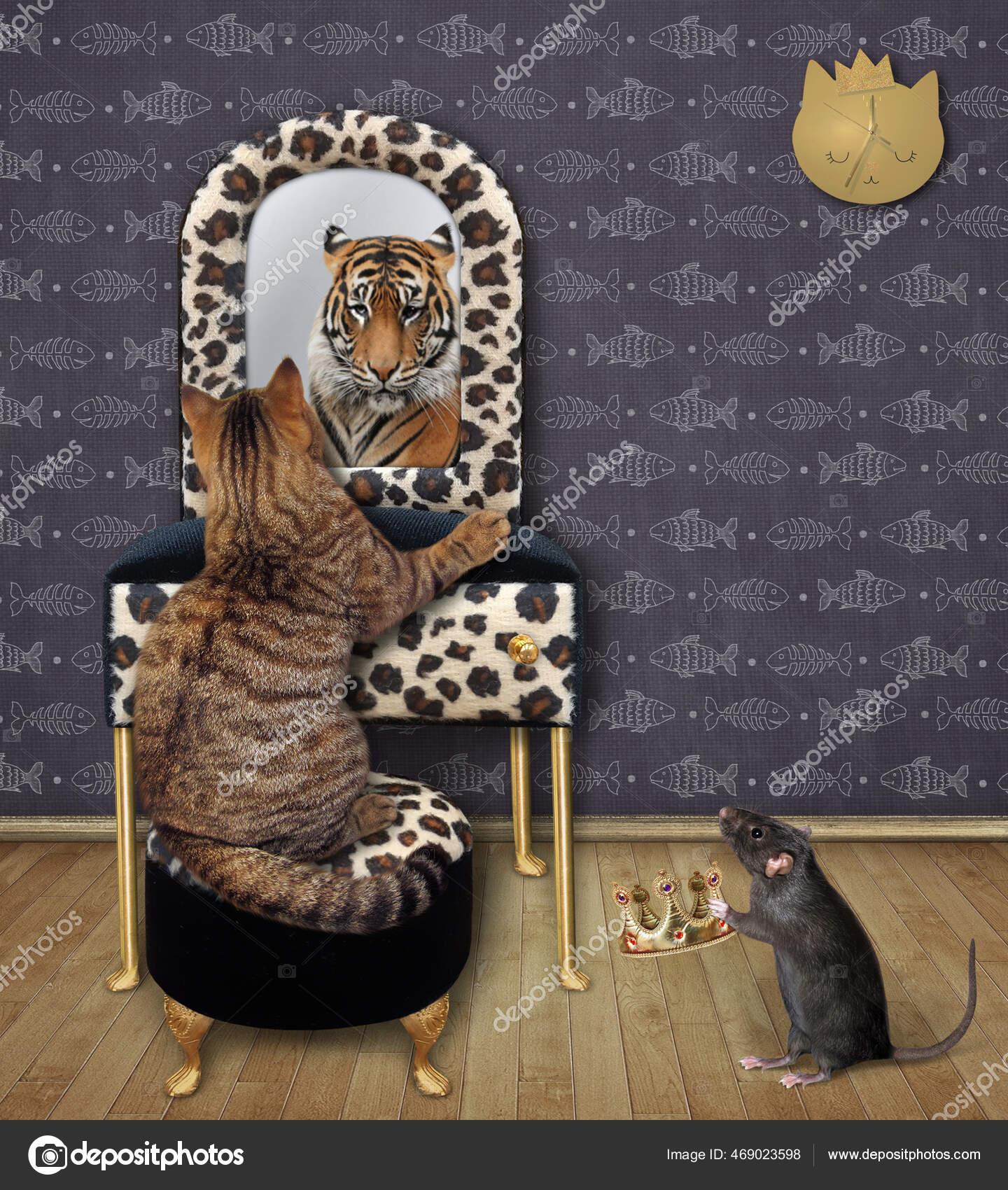 Mirror cat lion Cat With
