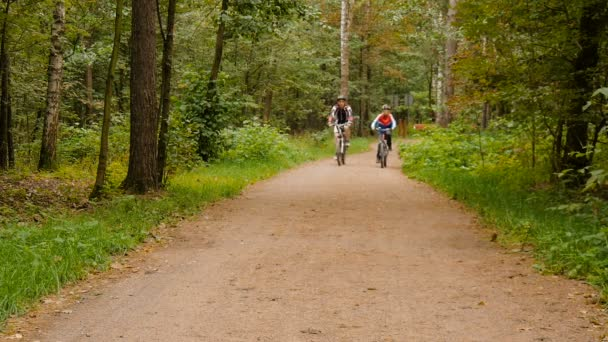 Otec a syn na kolech v parku