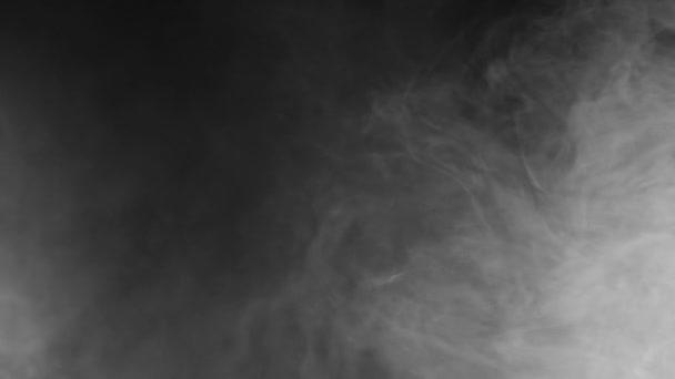 Cigaretový kouř. Abstraktní kouře na černém pozadí. Oblak kouře v pomalém pohybu