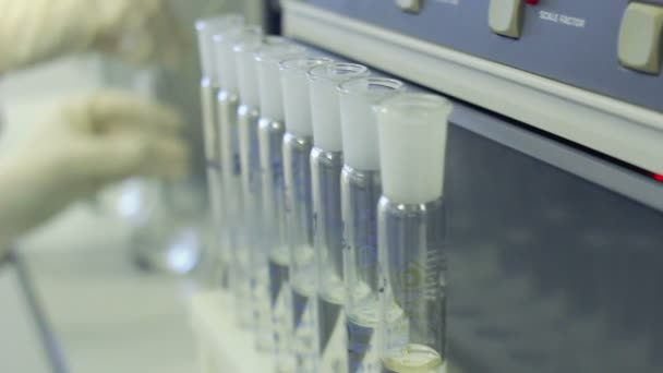 Chemist working with glass flask. Row of test tubes in medical laboratory