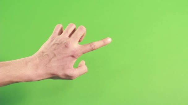 Hand isolated on green screen in studio. Gesture on background