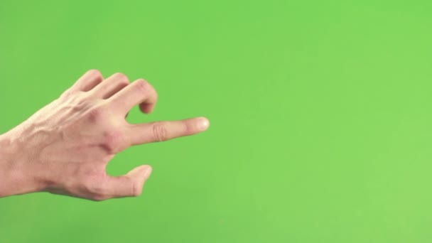 Person hand isolated on green background screen. Left hand on chroma key