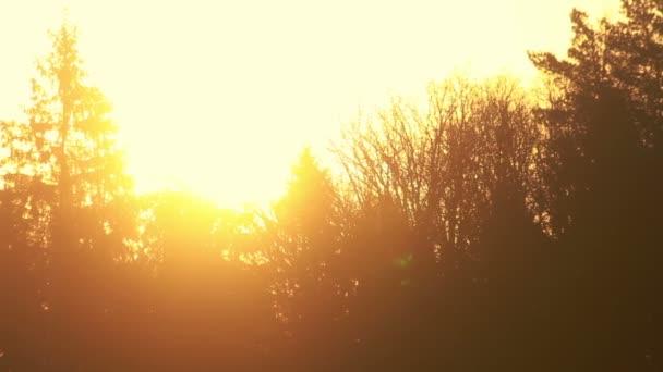 Sunset sky. Orange sky at sunset. Orange nature background