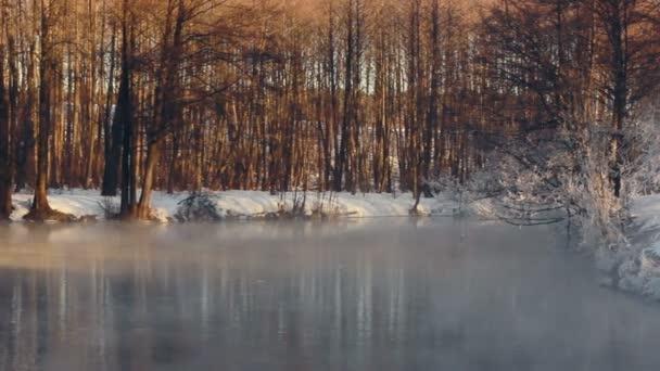 Téli csodaország. Téli táj. Téli erdő folyó felett köd