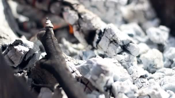 Aktivní uhlí. Spalování uhlí. Closeup. Příprava dřeva žhavý na grilu