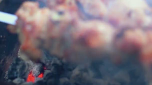 Pečené vepřové maso na mangal. Grilování masa na dřevěné uhlí. Grilovaná masa. Closeup