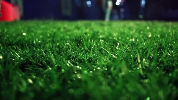Green grass. Closeup. Lawn close up. Grass background. Green grass soccer field