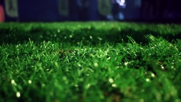 Green grass background. Stadium night. Green grass soccer field background.