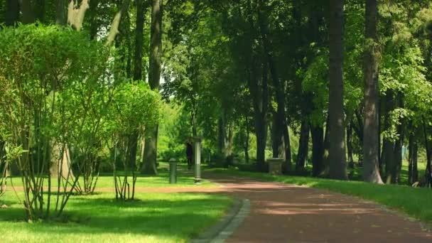 Frau läuft im Park. Fitness-Frau joggt im Freien. Lauftraining im Park