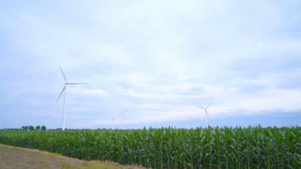 Větrné turbíny stojí v zeleném poli. Zelená energie a obnovitelné zdroje energie