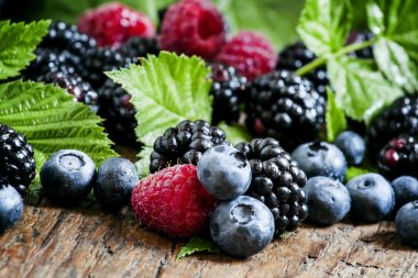 Fresh blackberries, blueberries and raspberries with green leaves