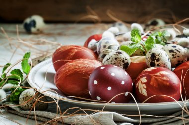 Easter colored eggs, quail eggs, twigs of willow