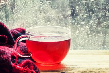 Cup with hot red tea in front of a window