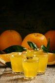 Fotografie Orange soda on a background of fresh oranges