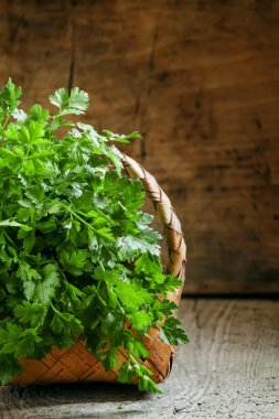 bunch of green flat leaf Italian parsley in wicker basket