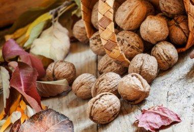 Fresh walnuts spill out of a wicker basket