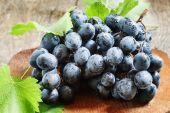 A régi fa háttér kék szőlő