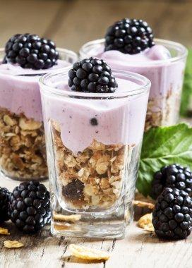 Homemade granola with yogurt and blackberries