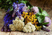 Bouquet of herbs and wild flowers