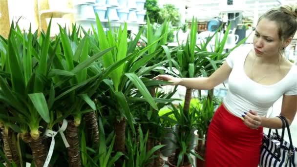 Woman in a supermarket. The girl in the shop. Buyer. Trade. Shopping center. Choose  plants. Buy houseplants. Flower shop