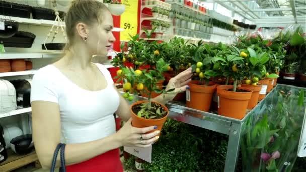 IKEA. Russia, Krasnodar 28/05/2016. Woman in a supermarket. The girl in the shop. Buyer. Trade. Shopping center. Choose  houseplants. Buy plants. Flower shop