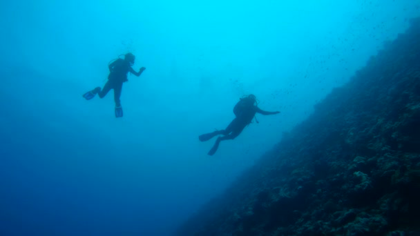 Scuba divers, man and woman swimming near the coral reef, Indian Ocean, Maldives