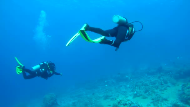 Two scuba divers with a coral reef