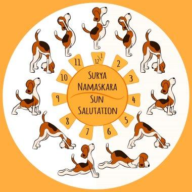 funny dog doing yoga position of Surya Namaskara