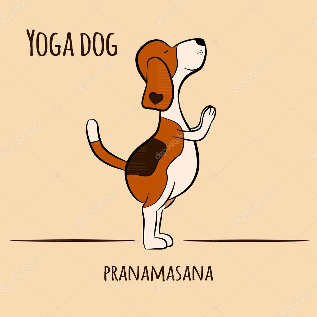 Cartoon Dog Shows Yoga Pose Pranamasana Surya Namaskara San Salutation Beagle Vector Illustration By Yanabolbotgmail