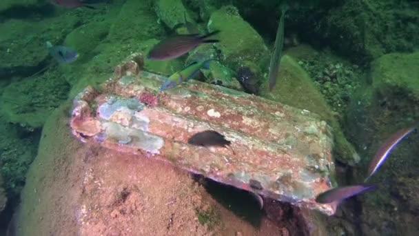 Staré kameny na dně moře