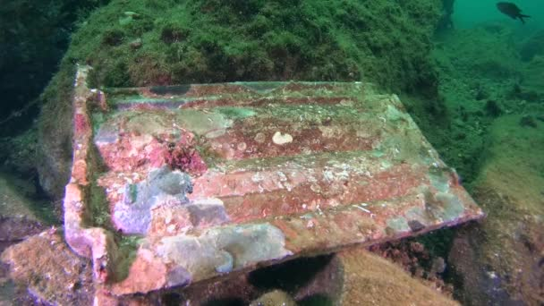 Staré kameny na dně moře.