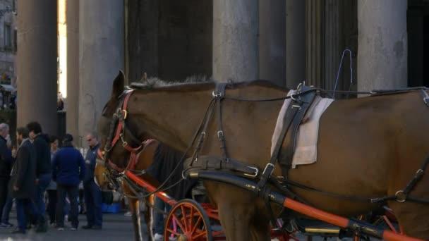Koňským povozem, Řím, Itálie