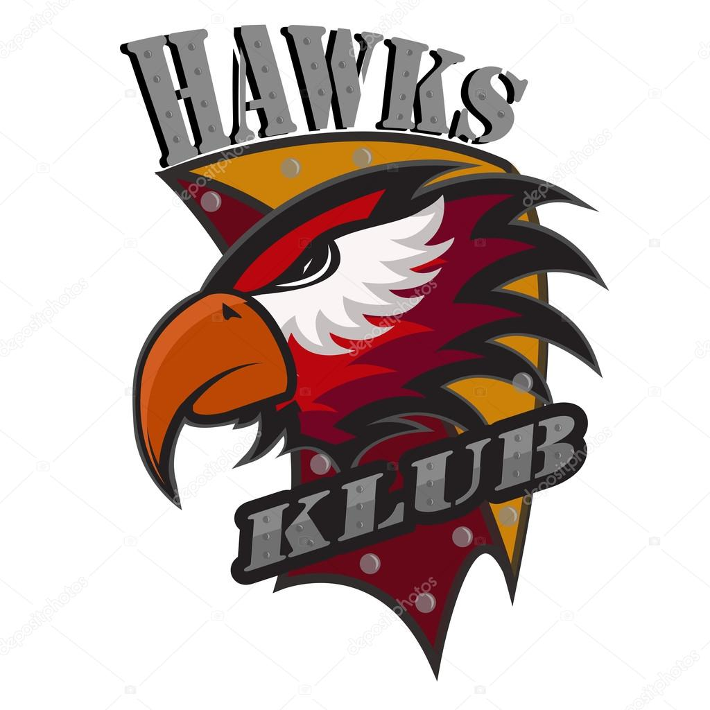 Professional sports logo hawks