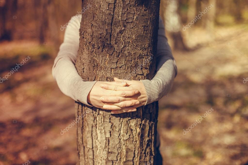 Female hands over tree