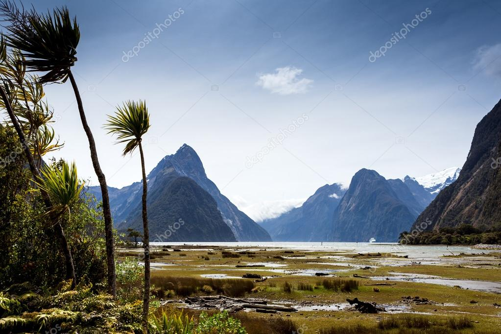 landscape at milford sound