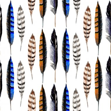 Watercolor Striped Feathers