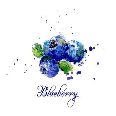Watercolor Blueberry & Splash