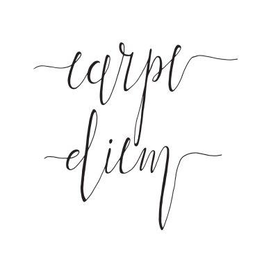 Carpe diem, latin aphorism