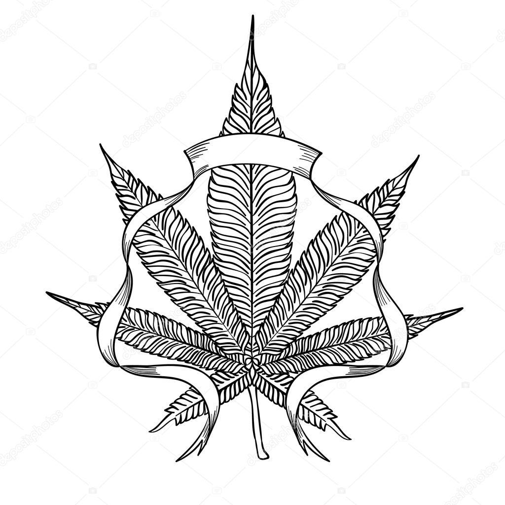 Feuille De Cannabis Elegant Image Vectorielle Kois00kois C 107642918