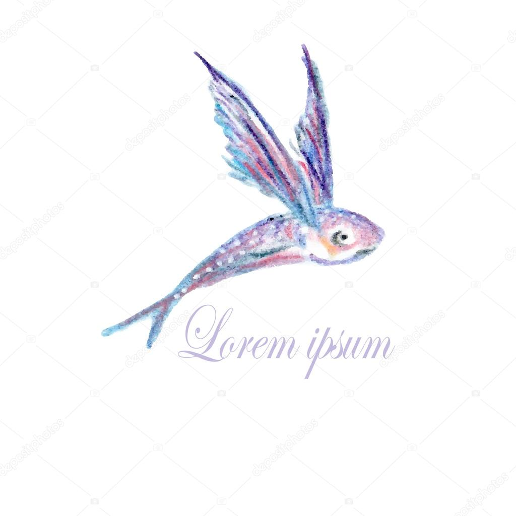 flying fish logo � stock vector 169 kois00kois 107645086